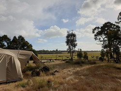 Camp ouest australien 2019-2020