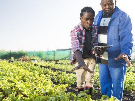 The need for a private sector coalition on agriculture
