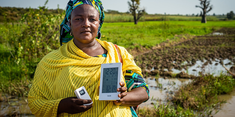 Digital innovations in agri-SME finance: Reflections on challenges and opportunities emerging around the COVID-19 crisis