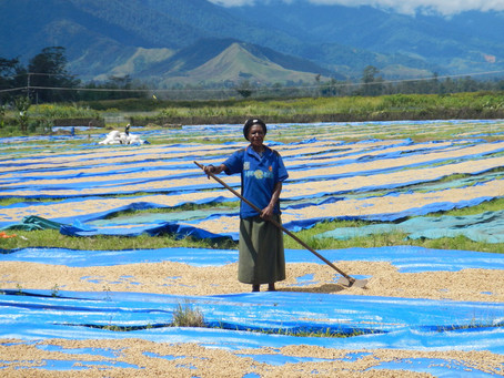 """Perspective: """"Less than 2% of climate finance reaches small-scale farmers,"""" Dr. Barbara Buchner, CPI"""