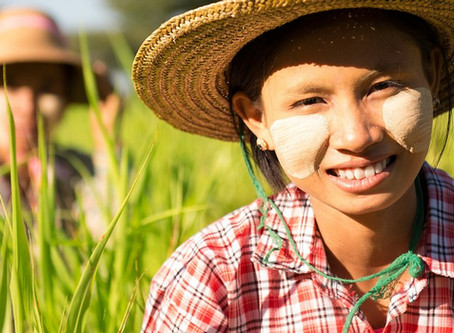 Empowering women in agriculture through responsible investing: Perspectives from Asia