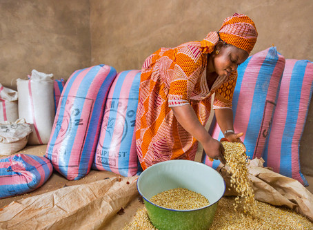 Could microfinance help prevent a health crisis from becoming an even greater food crisis?