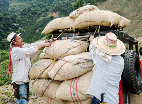 Lessons in expanding digital payments to remote communities in Mexico and Colombia