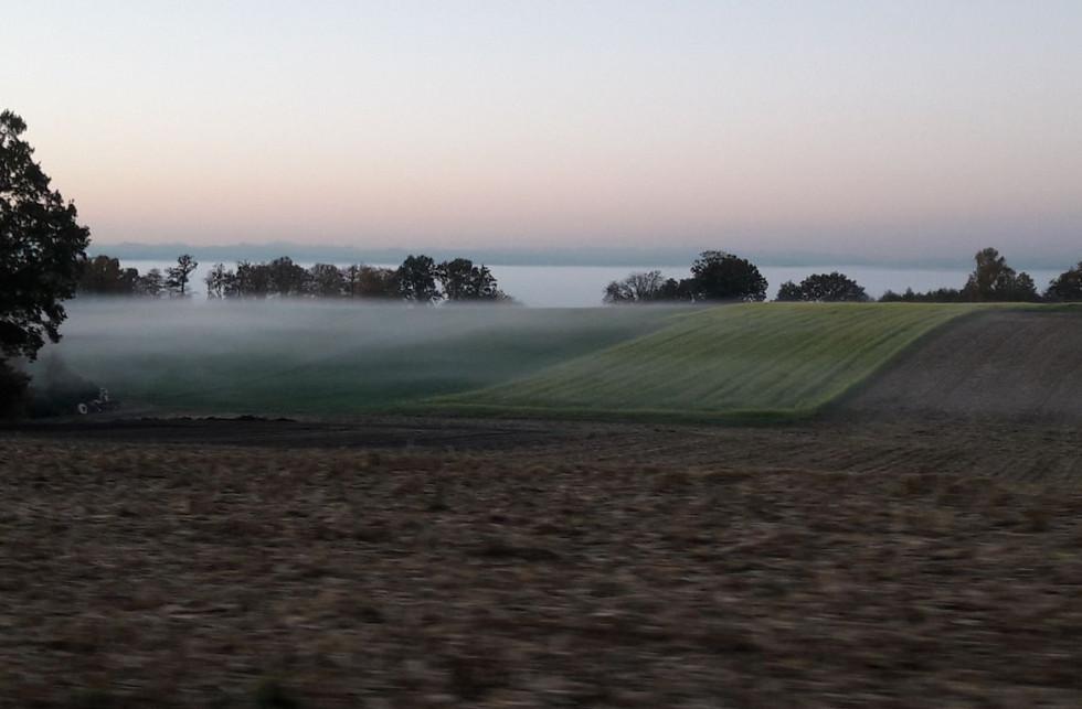 Feldlandschaft im Nebel.jpg