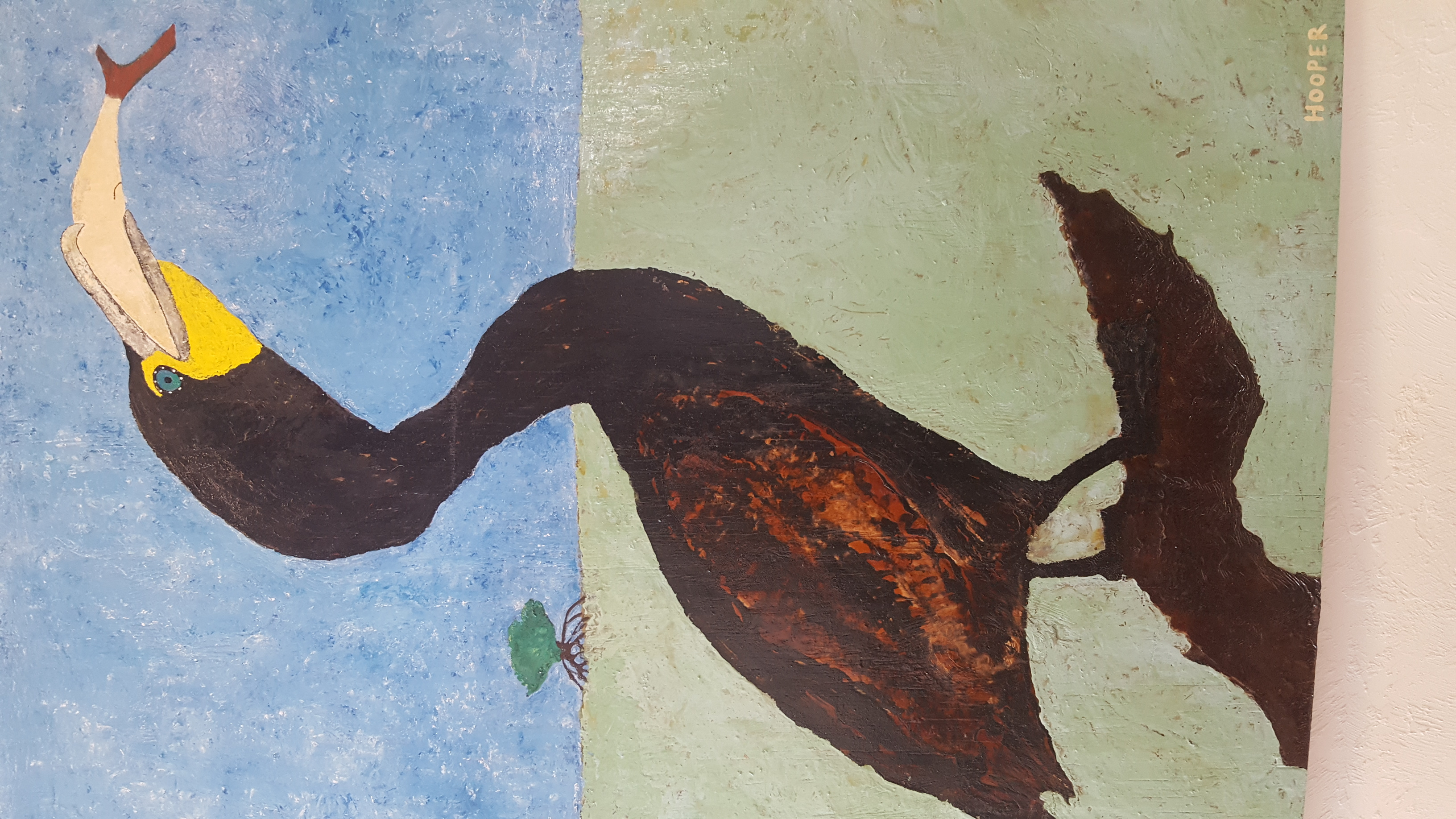 Cormorant w Fish