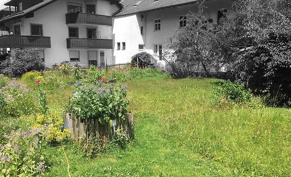 Objekt_Wiggensbach_Grundstück.jpg