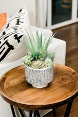 succulent end table living space remodel white black modern Amanda George Interior Design