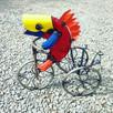FISH ON A TRIKE.jpg