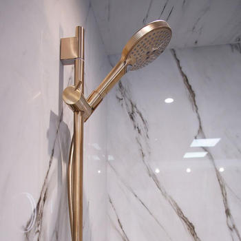 Hansgrohe Shower Brushed Bronze