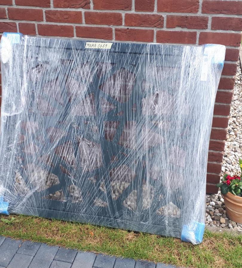 Gartentür Laser-Stripe 1.2.jpg