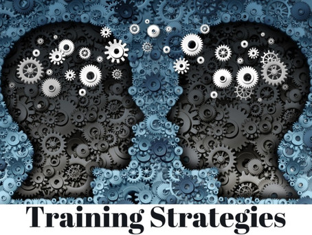 The Lean Journey:  Training Strategies for Standard Work