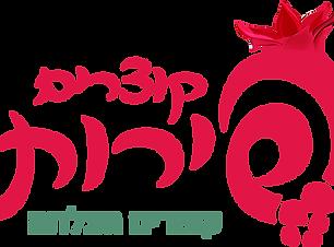 לוגו סדנאות.png