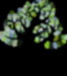 TreeCatBlueGreen.png