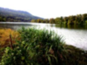 2011-10-09+17.40.19.jpg