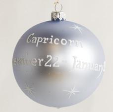1863 - Capricorn - View 2