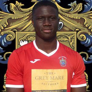 Samson Ogundaisi