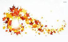 fall leaf sweep.jpg