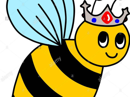 Queen Bee's for week ending Friday 11th December