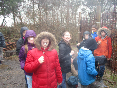 Year 6 Kingswood experience