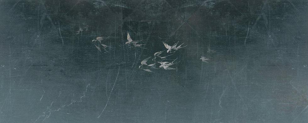 Screen Swallows 3 Kopie.jpg