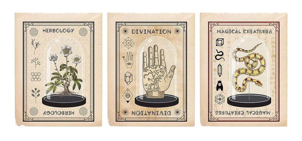 divination3.jpg