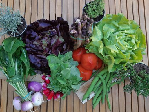 Vegetables spring range