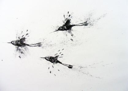 Colibrí Trio 4