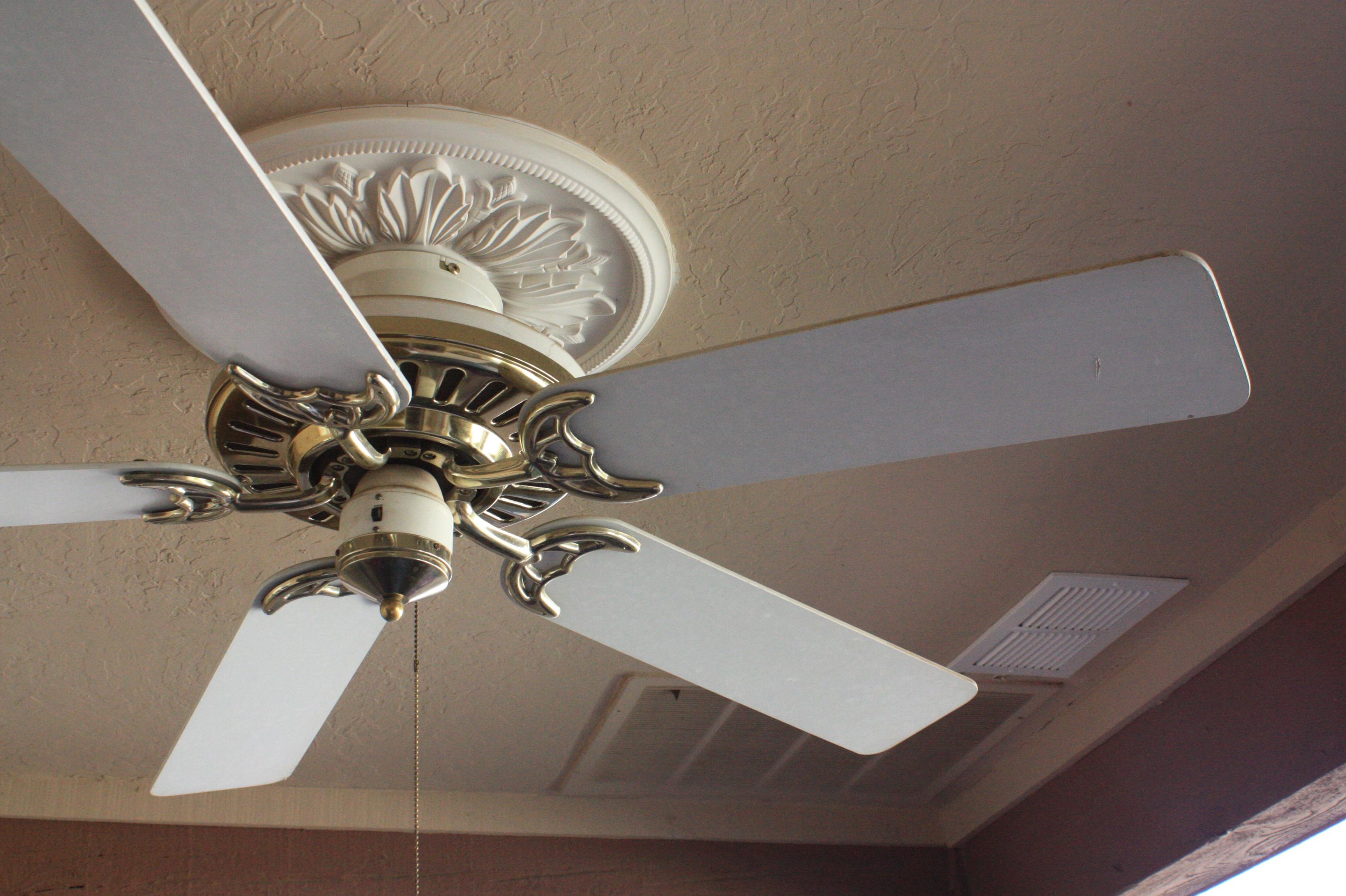 Patio Ceiling Fan & stereo speakers