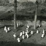 Gita Scolastica, Pompeii