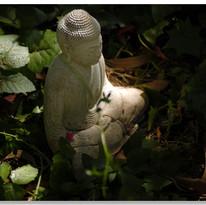 Perfect Buddha #1