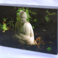 Perfect Buddha #2