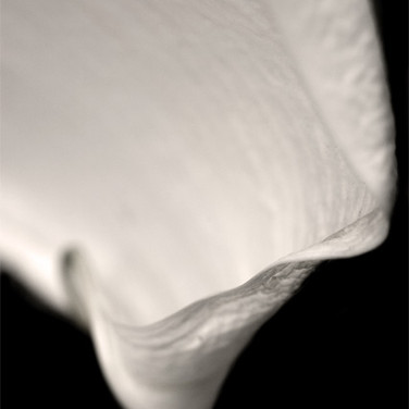 Lily #1, 2007