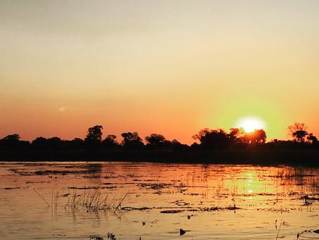 AFRICA: The Okavango Delta, Botswana