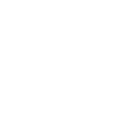 Wellest Health Pelvic Floor PT W