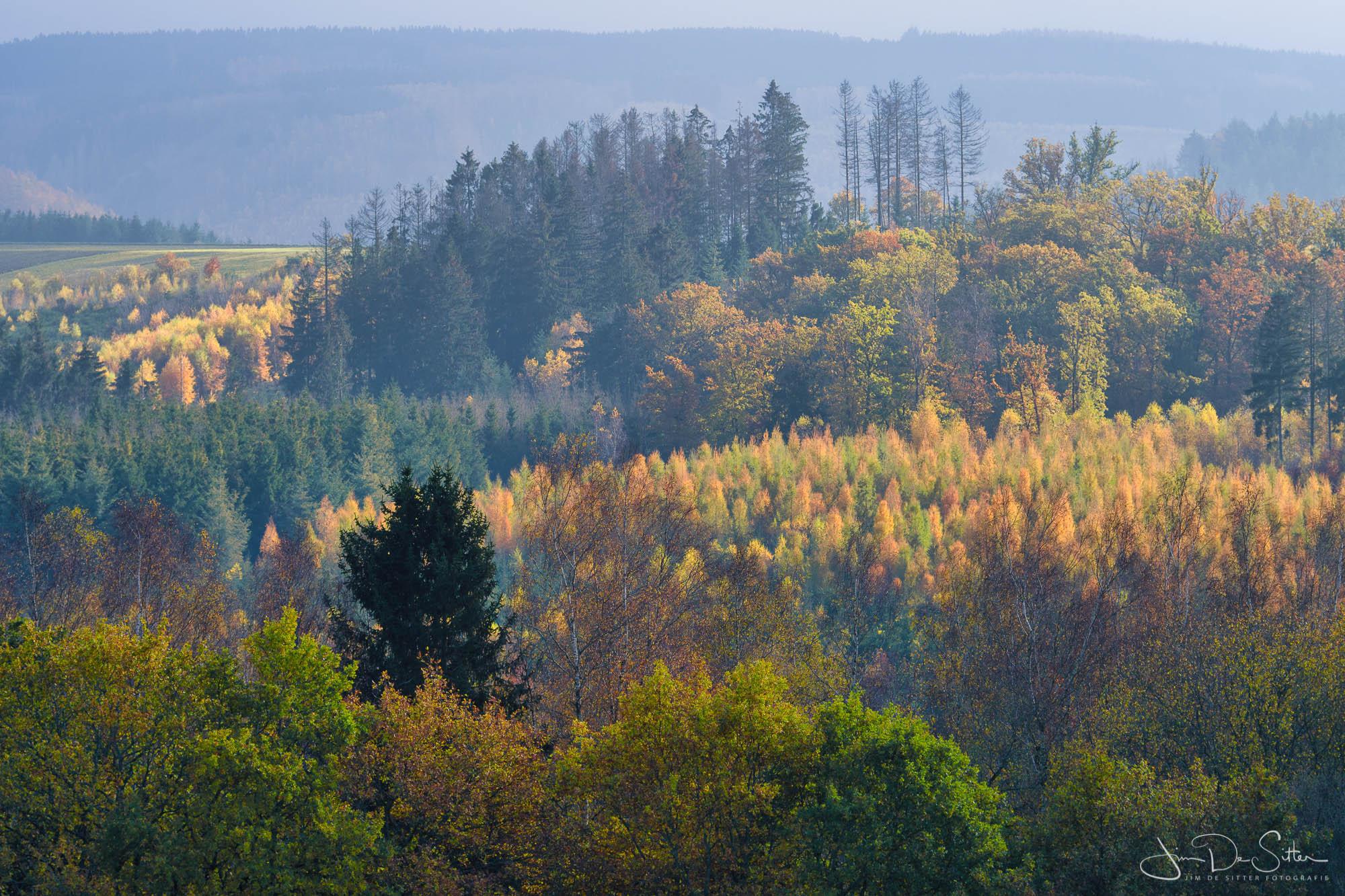 Landschapsfoto : Herfstlandschap in de Ardennen