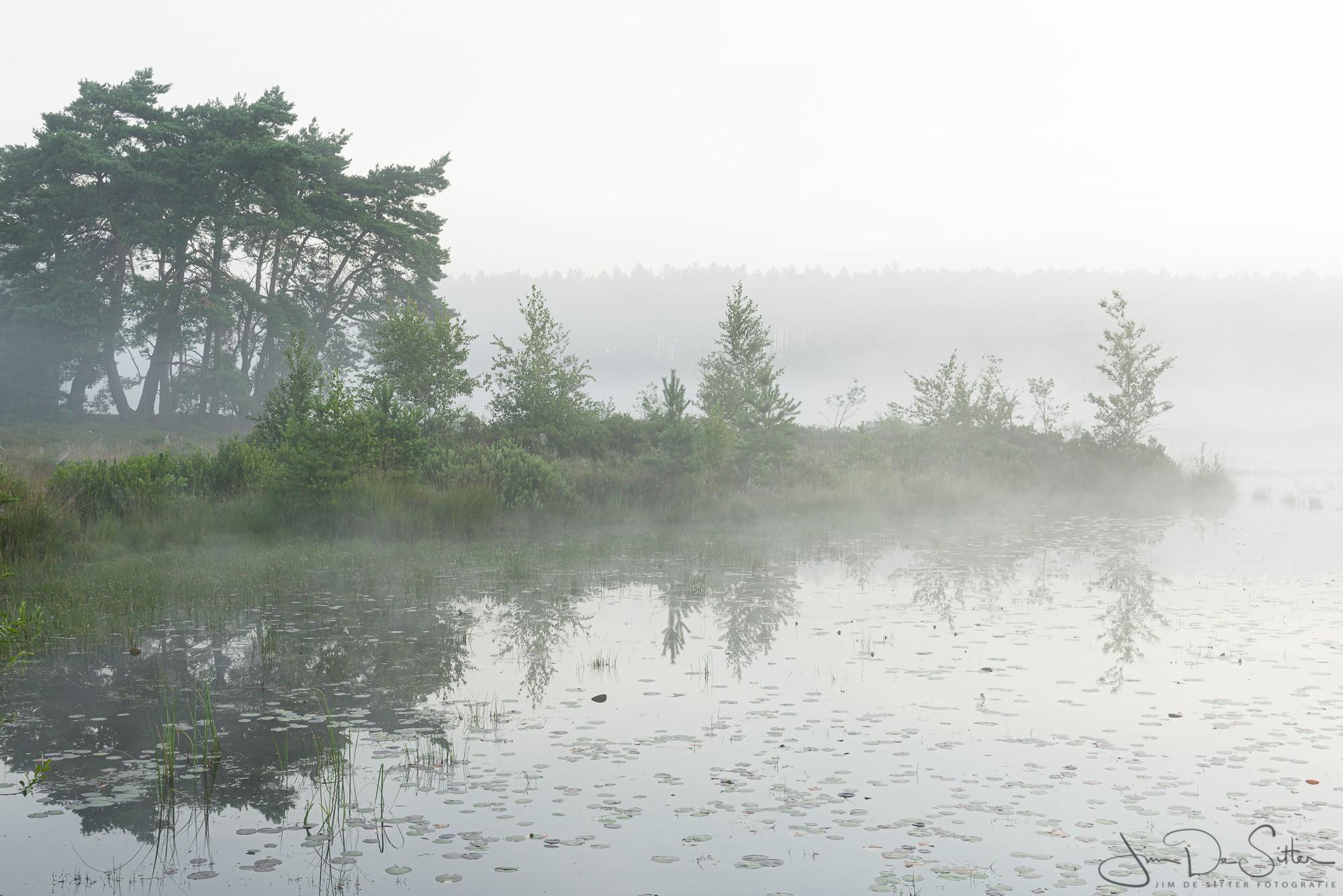 Landschapsfoto : ochtendmist boven De Teut