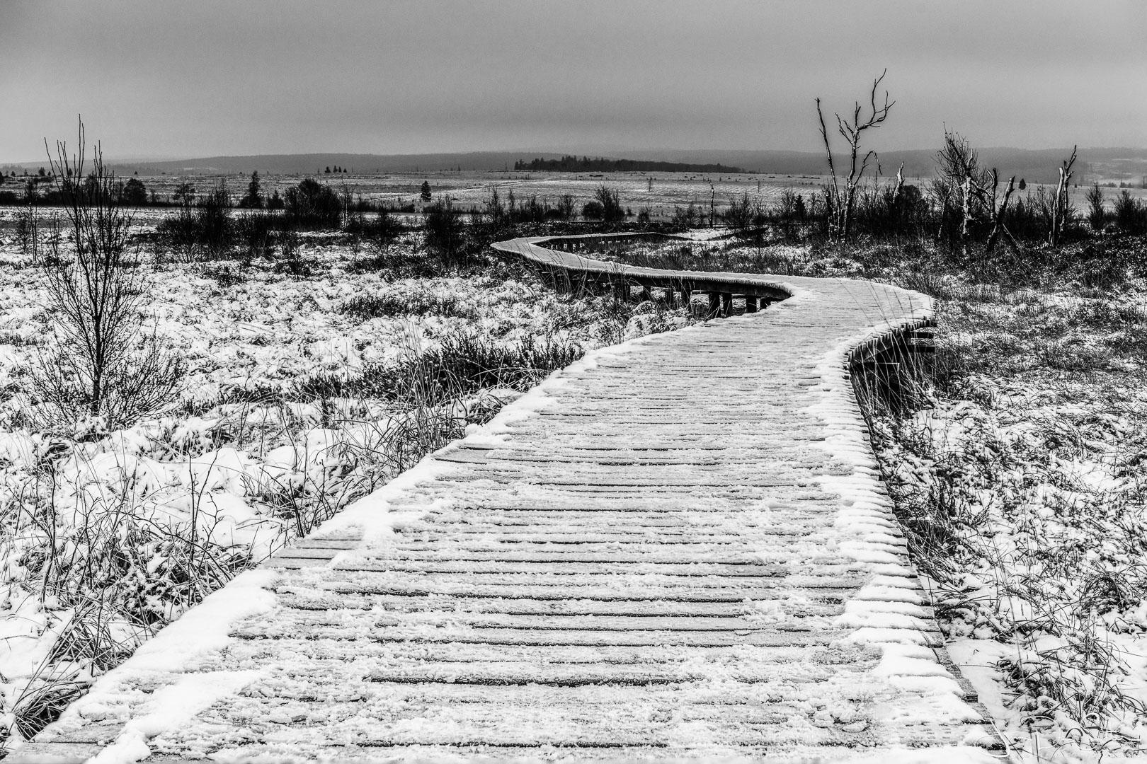 Landschapsfoto : De eerste sneeuw in Baraque Michel