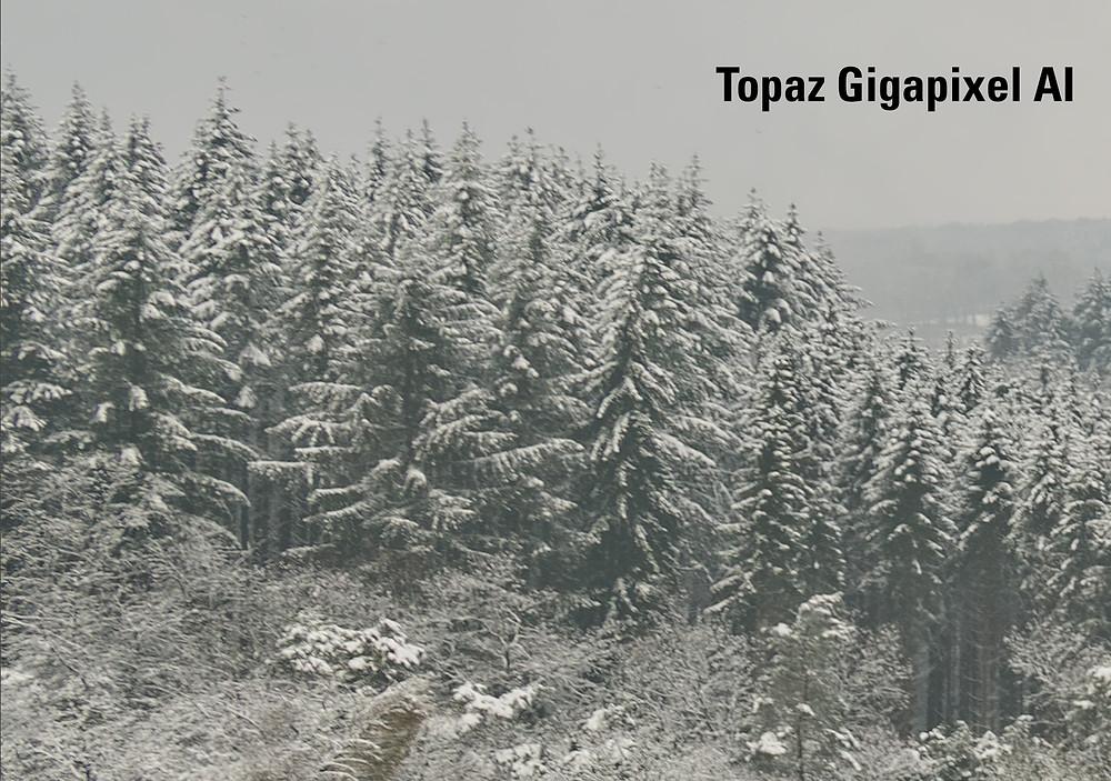 Het Topaz GigaPixel AI beeld is scherper dan het Photoshop beeld, maar voelt natuurlijker aan dan de Superresolutie