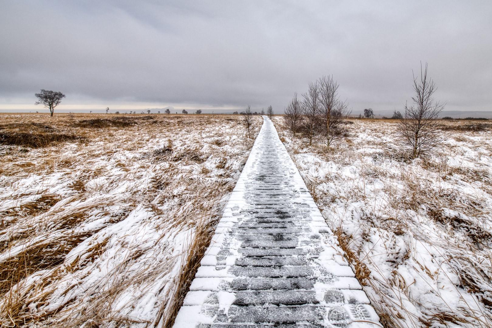 Landschapsfoto : Een eerste dun laagje sneeuw in de Hoge Venen