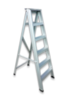 Dominion Aluminium ladder