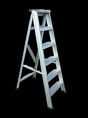 Dominion Aluminium ladder