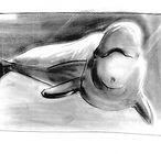 Linea-Baleine-14.jpg