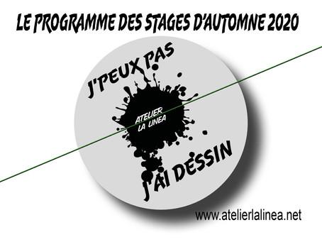 LE PROGRAMME DES STAGES D'AUTOMNE 2020