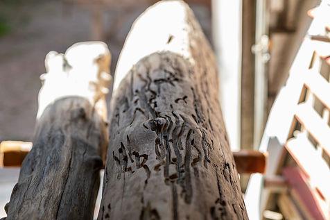 HolzPlusArt-17.jpg