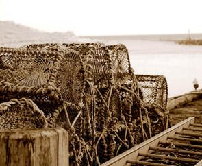 Creels at Brora harbour