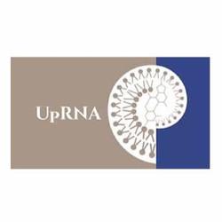 UpRNA