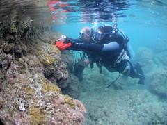 PRIORITY Marine Sciences.JPG