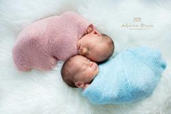 newborn twins surrey photo