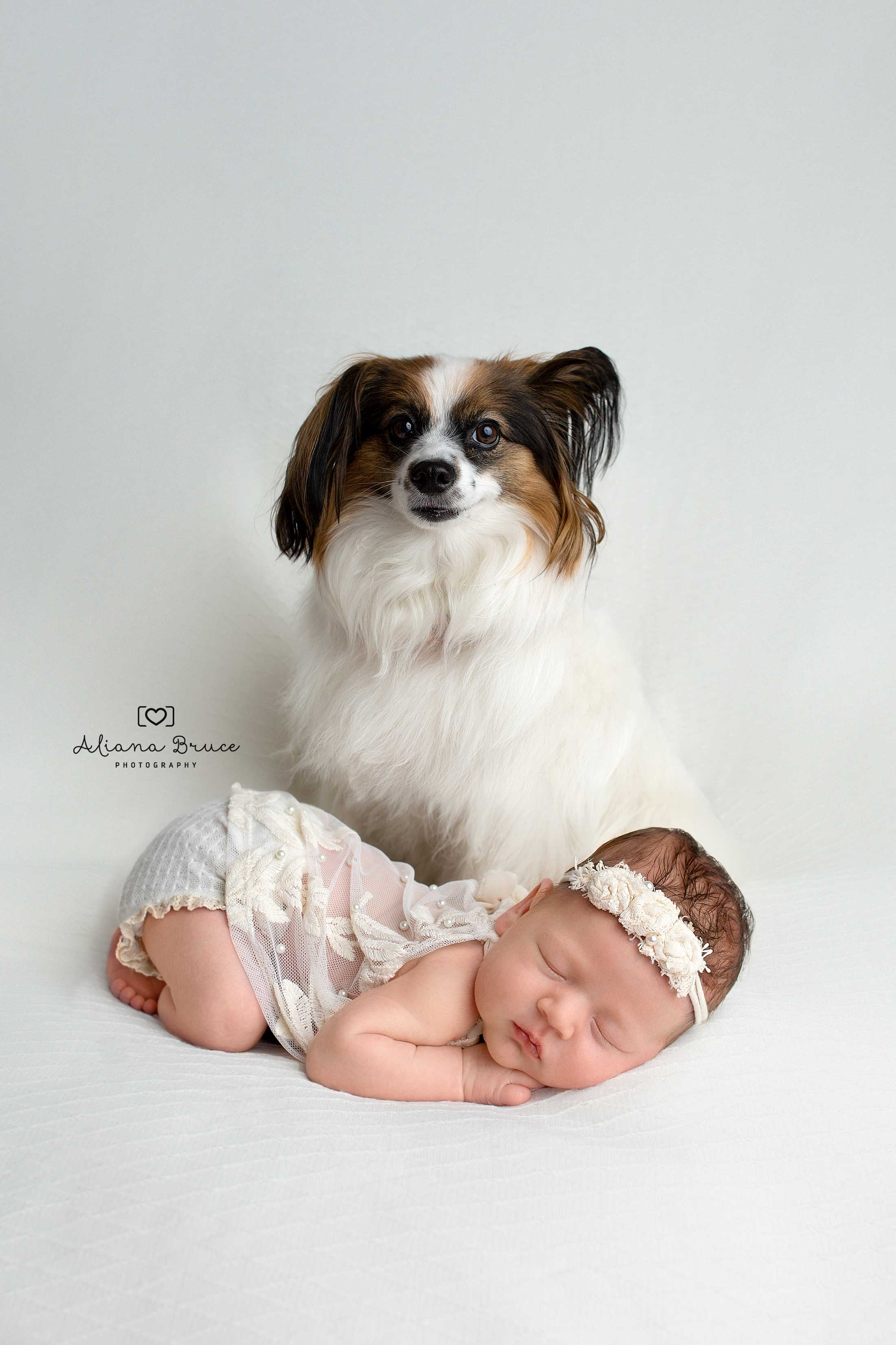 Newborn and Dog