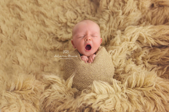 Why does Newborn Photography cost what it does?